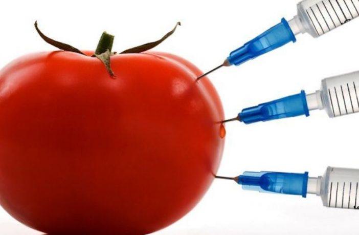 Nema čvrstih garancija da hrane sa prisustvom GMO nema na tržištu BiH