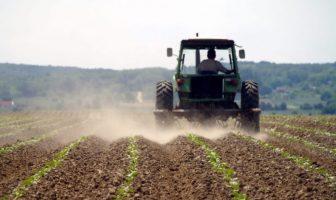 Bićo: Vlast se konačno zainteresirala za poljoprivrednike i proizvodnju hrane