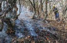 Istraživanje CIN-a: Vatrogasci tražili čizme, a dobili metlarice