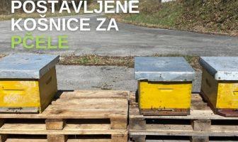 Radioaktivnost na Trgovskoj gori hrvatski stručnjaci ispituju uz pomoć pčela