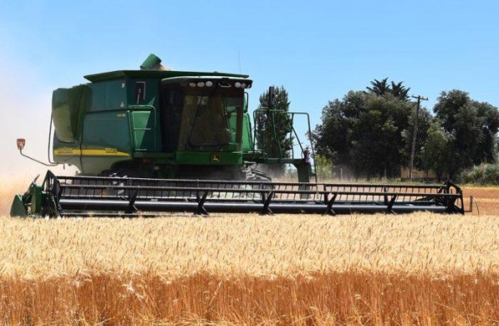 FAO: Globalne cijene hrane padaju ali još uvijek su za 33,9 posto veće nego u istom periodu prošle godine